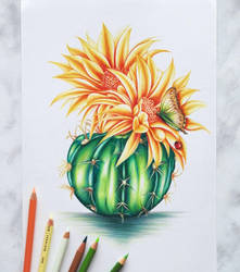 Cactus by AnnasDrawing