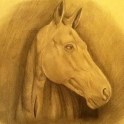 horse by KittyKati