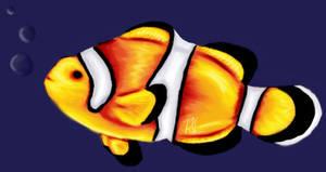 Clownfish by llvlarxene