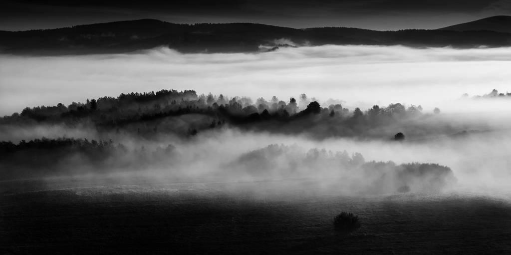 The Inner Landscape By My Silent Tree On Deviantart