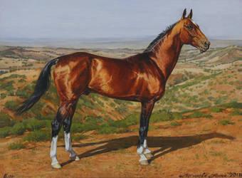 Akhal-Teke stallion El` by Loginova