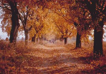 Love autumn by Reikika