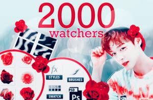 2000 WATCHERS PACK! by Hallyumi