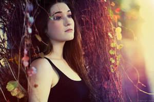 Change Of Seasons by KayleighJune