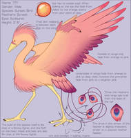 Sunsetbird Reference by armaina