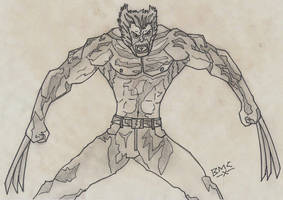 WOLVERINE by daddyconnolly