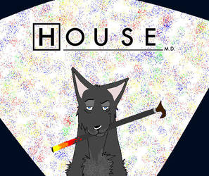 House the doctor wolf by BlackWolfSoul