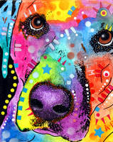 labrador close-up by deanrussoart