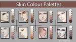 Skin Colour Palettes by Myme1