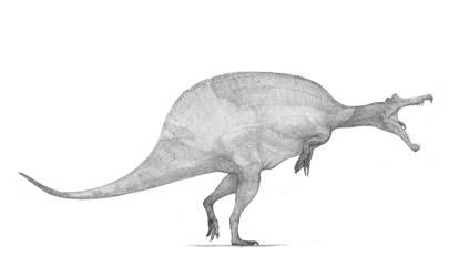 Spinosaurus aegyptiatus v2 by Monopteryx