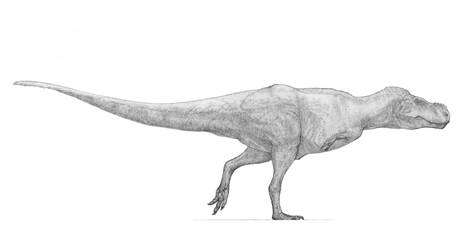 T-Rex v2 by Monopteryx
