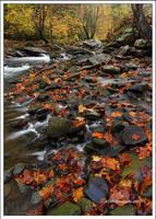 Ahhhh Autumn by TRBPhotographyLLC