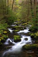 Smoky Mountain Stream by TRBPhotographyLLC