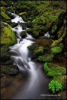 North Carolina Cascade II by TRBPhotographyLLC