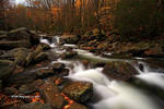 GSMNP Autumn 1 by TRBPhotographyLLC