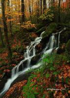 GSMNP Autumn 3 by TRBPhotographyLLC