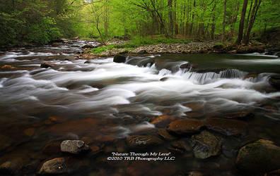 GSMNP Spring 9 by TRBPhotographyLLC