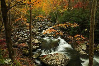 Autumn 2011 GSMNP by TRBPhotographyLLC