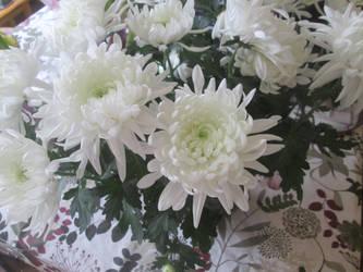 Easter Chrysanthemums 1 by KateMB19