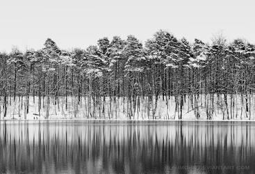 winter contrasts by Blaumohn