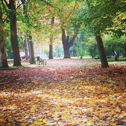 Autumn by FabosAti