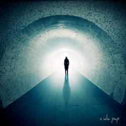 The light by ideoda
