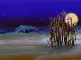 Bamboo moon by teddybearcholla