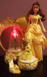 Some of My Beautiful Belle Things by DisneyandZimFanatic