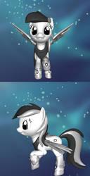 Ndsi pony by empoleonxi