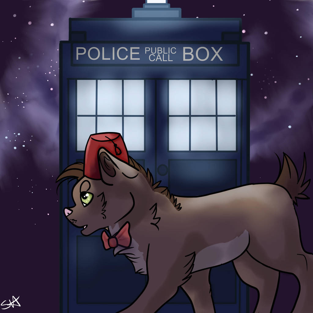 Doctor Who 11th Cat by TheFallenWhisper