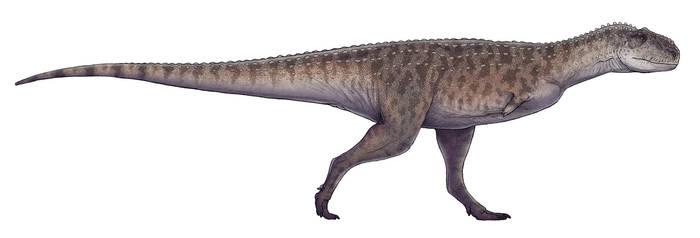 Rajasaurus narmadensis by Paleocolour