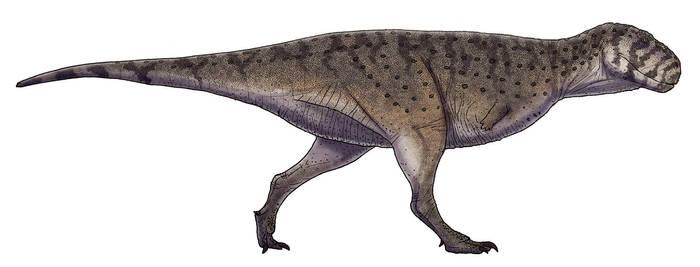 Skorpiovenator bustingorryi by Paleocolour