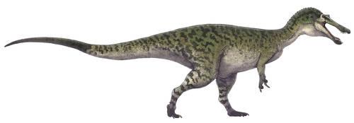 Baryonyx walkeri by Paleocolour