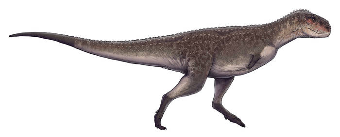 Viavenator exxoni by Paleocolour