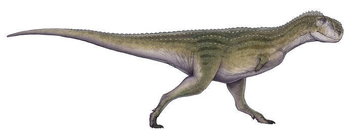 Chenanisaurus barbaricus by Paleocolour