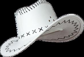 Cowboy Hat Stock by pixelmixtur-stocks