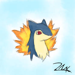 20 minute Typhlosion drawing by Nindota4