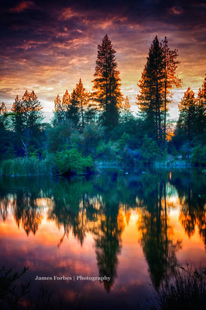 Reflection 2 by JForbes1701