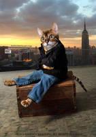 Cat by Rafido