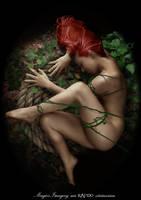 Secret garden by Rafido