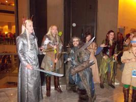 Elves and Dwarves by rjccj