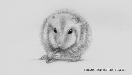 How to Draw a Realistic Hamster (Narrated) by ArtistLeonardo