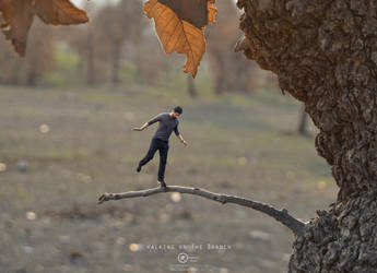 Walking on The Branch by Mohammed-Hussein