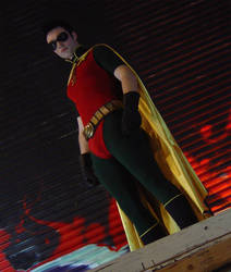 Robin III by TimDrakeRobin