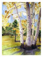 Golden Autumn by solgas