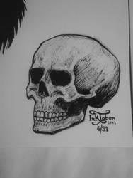 inktober - skull by lussinka