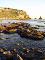 Point Vicente Tidepools by uhlrik