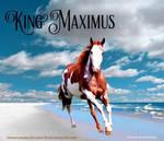 King Maximus- Horse Avatar  by MuchMischief