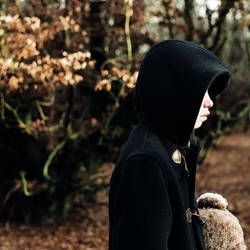 The Bewildered by Jazbagz