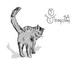 Cat. by b4g13nny